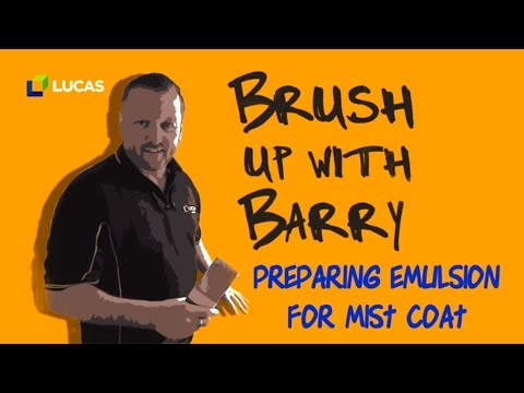 4 - How to Prepare Paint for the First Coat on Bare Plaster - Easy Home Improvements