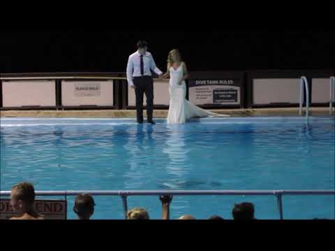 Newly Married Couple Jump Into Rocky Mountain Hot springs Pool in Wedding Clothes