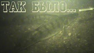 Подводная охота на судака. Как было Раньше...(подводная охота на судака. какой она была раньше! кто бы что ни говорил но общая тенденция всё таки меняется,..., 2016-10-20T18:00:01.000Z)