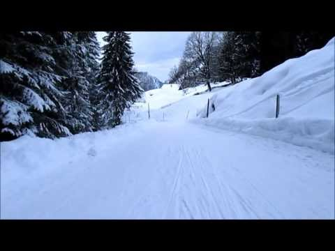 Awesome Grindelwald Swiss Sledge Ride