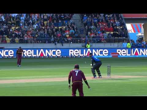 *Crowd View* Martin Guptill reaches 200 vs West Indies CWC Quarter Final