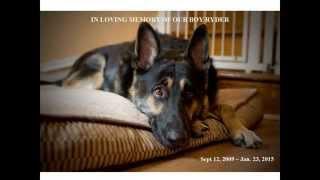 In Loving Memory Of Ryder The German Shepherd The Greatest Friend.