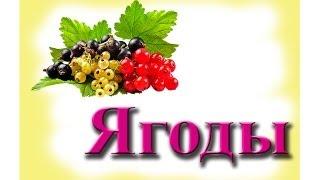 Развивающие картинки - ягоды