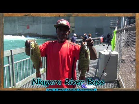 Lower Niagara River - Summer Shore Fishing 2020