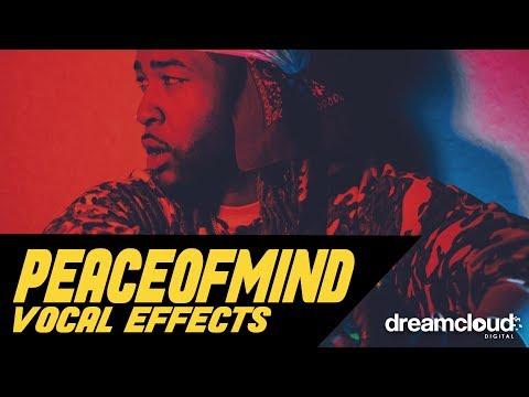[FLP] PARTYNEXTDOOR - Peace of Mind (Vocal Preset)
