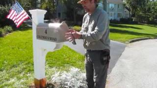 Compare Plastic Junk Mailbox To Yankee