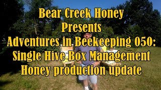 Adventures in Beekeeping 050: Single Hive Box Management Honey production update
