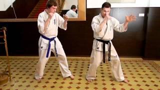 Тамир и школа Киокушинкай 5ч упражнения на дистанцию