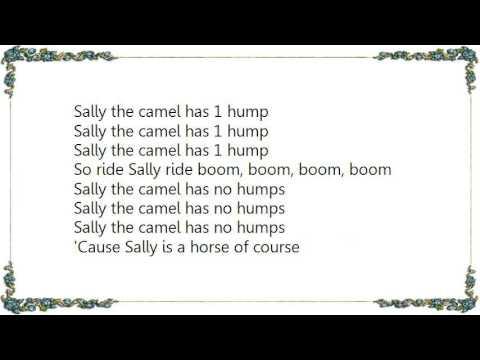 Sally the Camel | Barney Wiki | FANDOM powered by Wikia