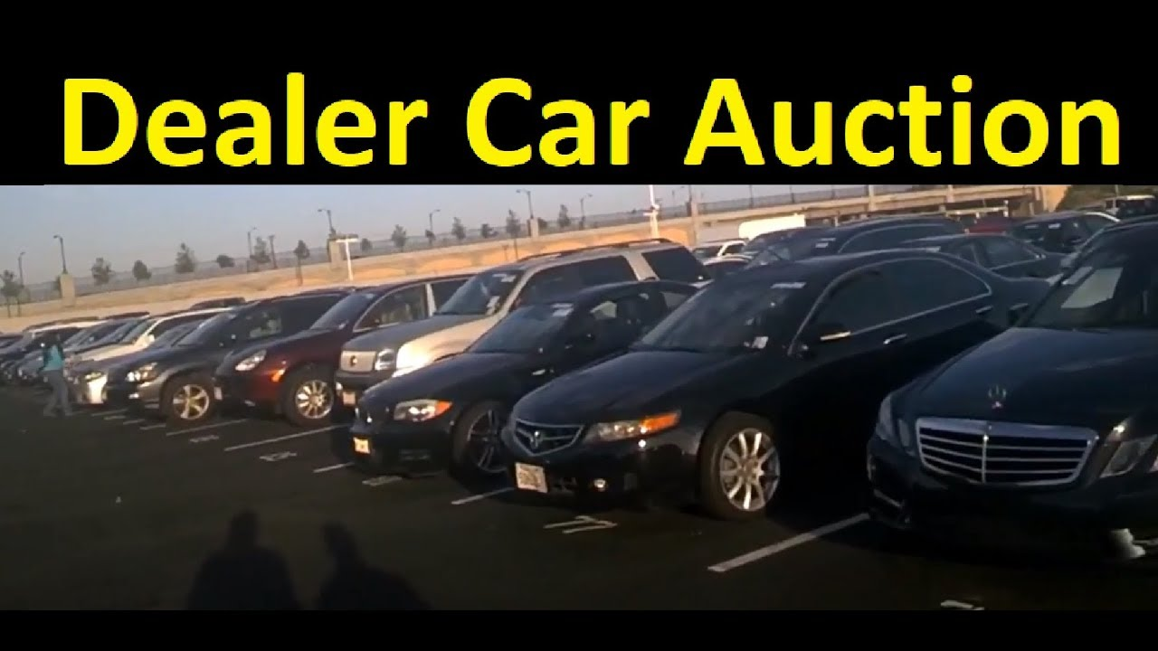 How To Buy Cars At Auction >> How To Buy Wholesale Cars Dealer Auto Auction Part 2