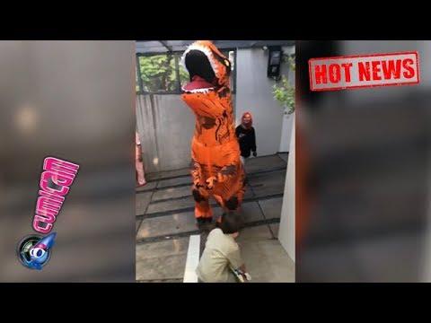 Hot News! El Barack Ulang Tahun, Jedar Hadiahi Dinosaurus Besar - Cumicam 21 Juli 2018