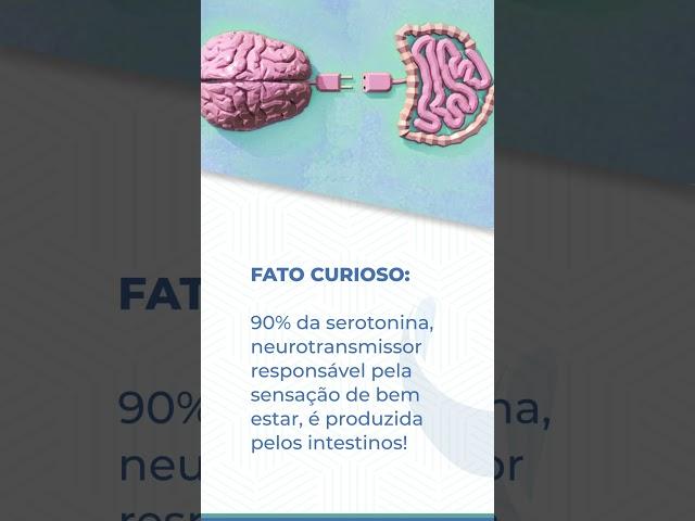 Você sabia que a seratonina é produzida no intestino?