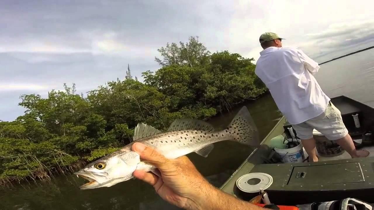 Vero beach florida island fishing youtube for Vero beach fishing report