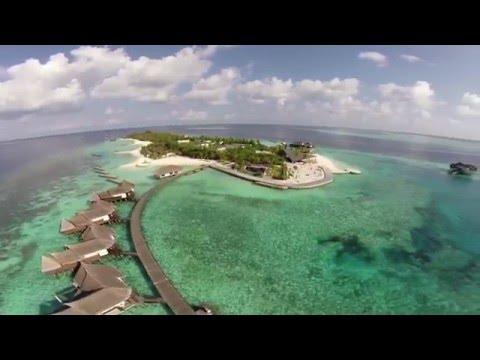 Отель Jumeirah Vittaveli 5* Maldives, МАЛЬДИВЫ, Мале Атоллы (видео, отзывы, туры, бронь)
