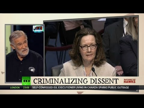 Monkey Beds Cleaner than Haspel's Record