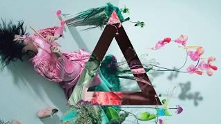 Björk - Features Creatures (Android Citizen Remix)