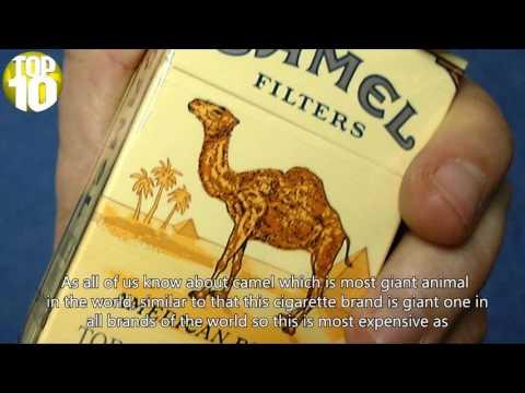 Menthol cigarettes Dunhill Massachusetts