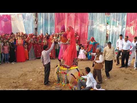 Camel Dancing On Haryanvi DJ Song At Rajasthani Marwadi Marriage With Marwadi Girl Dance.