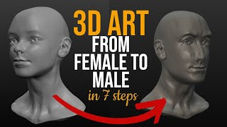 From female to male in 7 steps (3D sculpture)