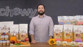 Nutro Ultra Dog Food | Chewy