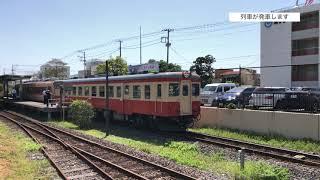 『いすみ鉄道いすみ線 キハ28形(2346) + キハ52形(125) 元国鉄急行形気動車』