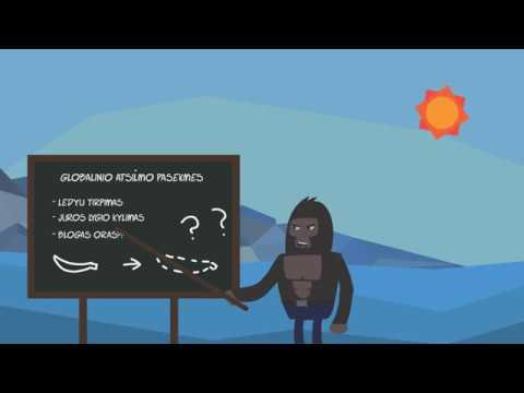 Globalinio atšilimo pasekmės