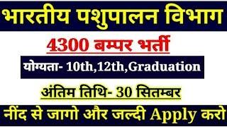 भारतीय पशुपालन में आयी बम्पर भर्ती।।कुल 4300 पद खाली,अंतिम तिथि 30 सितम्बर,जल्दी Apply करो