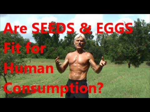 Are SEEDS & EGGS Fit for Human Consumption?