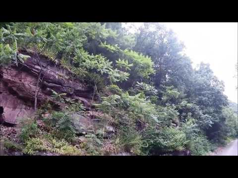 Pine Creek trail with snakes in the grand canyon of PA part 2