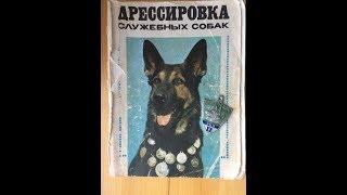 видео Дрессировка служебных собак
