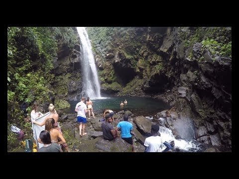 The Beauty of Nature - Falls of Baleine | St. Vincent and the Grenadines