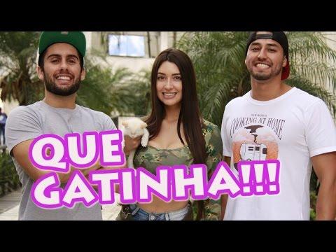 COMO LEVAR UMA GATINHA PRA CASA | Feat Sabrina Raissa | Lets Go Tv thumbnail