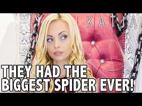 THEY HAD A GIANT SPIDER! | Katja Glieson