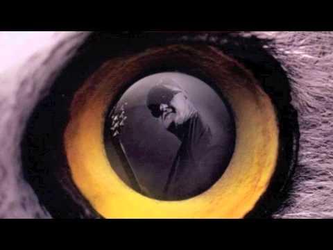 Jan Akkerman - Blind Baby
