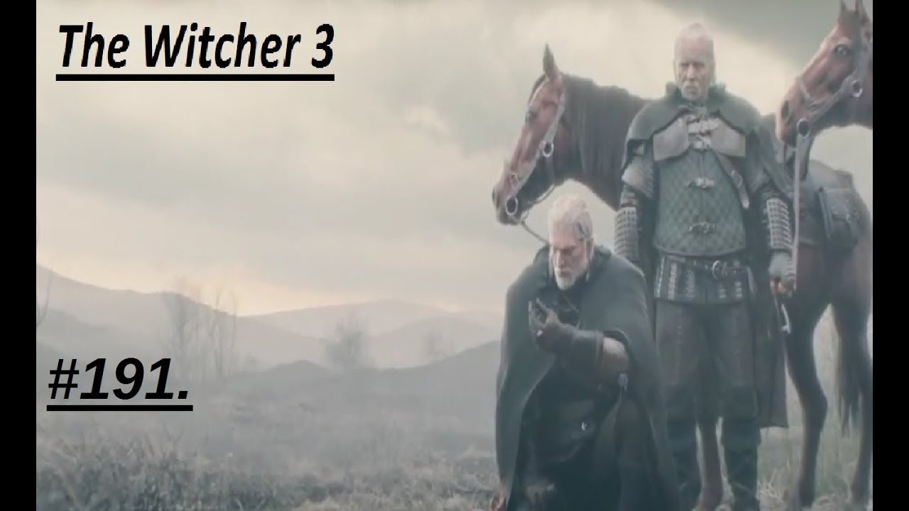 The Witcher 3 Wild Hunt Game Of The Year Edition191 Harte