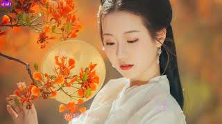 [Vietsub] Thương Ly Biệt - 伤离别 - Ngụy Tân Vũ - 魏新雨