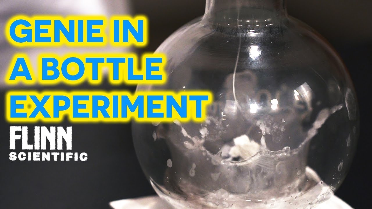 genie in a bottle experiment youtube