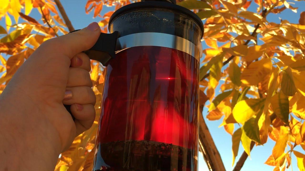 fall season tiesta tea immunity review testing ikea. Black Bedroom Furniture Sets. Home Design Ideas