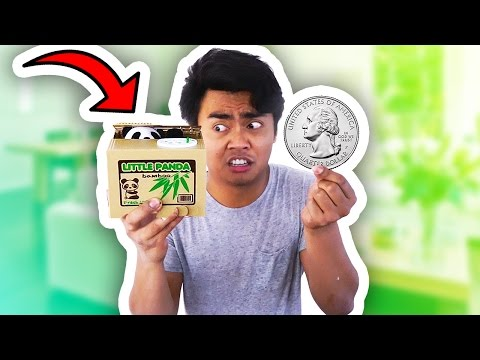 Thumbnail: ADORABLE COIN BANK TOY EVER! GUAVA JUICE