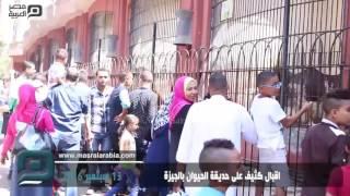 مصر العربية | اقبال كثيف على حديقة الحيوان بالجيزة