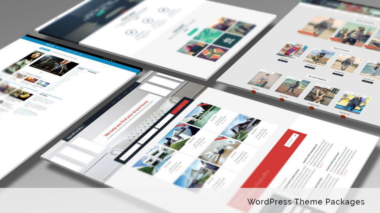 The 10 Best WordPress Theme Packages (Developer Packs)