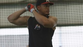 #THIS: Stanton Batting Cage