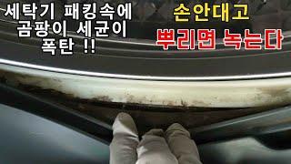 세탁기 속 곰팡이 폭탄 1000원대로 쉽게 제거하는 법! 고무패킹 청소 뿌려만 두면 된다!