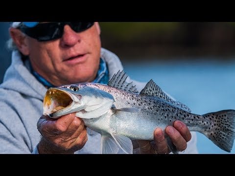 Anclote Key Fishing Florida For Inshore Trout And Redfish On DOA Lures