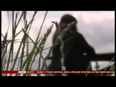 DIVYA TALWAR BBC Correspondent - Forced Marriage illegal in England