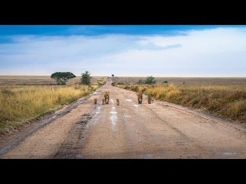 Afrika trip Entebe - Dar