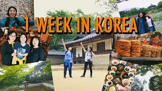 1 Week in Korea and What I Learned...Kindness is A Language :) thumbnail