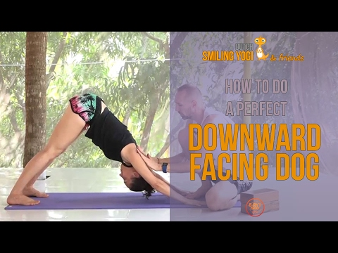 downward facing dog for beginners  correct alignment