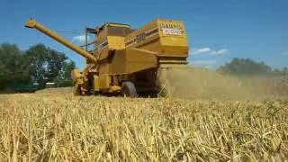 ㋡Żniwa 2016㋡ Sampo Rosenlew Zetor Harvest in Poland