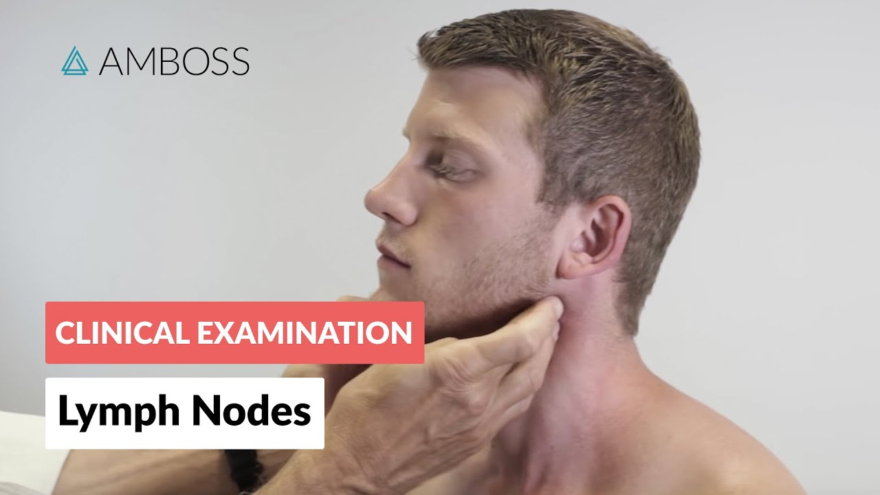 swollen glands in neck diagram trailer plug wiring 7 way uk examination of the lymph nodes - clinical | Δ amboss youtube